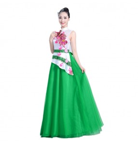 Traditional chinese china folk dance Dresses for women female green yangko fairy performance competition cosplay long dresses