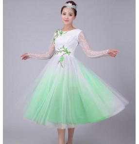 Chinese traditional folk dance dresses women's female competition stage performance chinese folk yangko fairy chorus dancing dresses