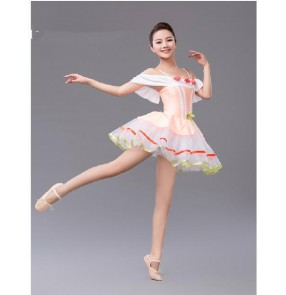 Girls children adult tutu skirt leotard ballet dance dress