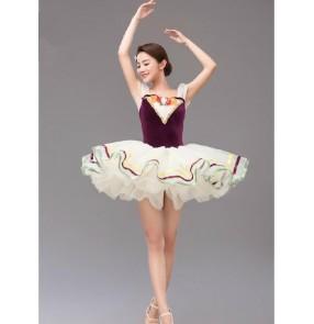 Kids girls adult velvet  leotard skirt tutu ballet dance dress custom size